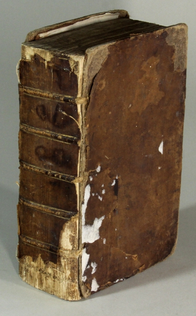 A new general English dictionary...The sixteenth edition. Thomas Dyche, William Pardon.
