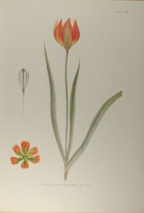 Notes on tulip species … edited and illustrated by E. Katherine Dykes. Introduction by Sir A. Daniel Hall.