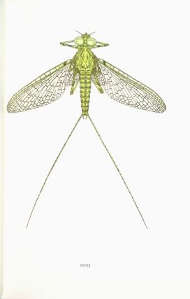 Mayflies of the driftless region. Wood engravings by Gaylord Schanilec, with identifications by Clarke Garry