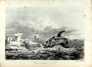 Journal of a voyage to Greenland in the year 1821. With graphic illustrations