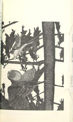 Chanticleer of Wilderness Road: a story of Davy Crockett...Engravings by Gaylord Schanilec